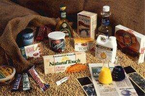 verschiedene-soja-produkte